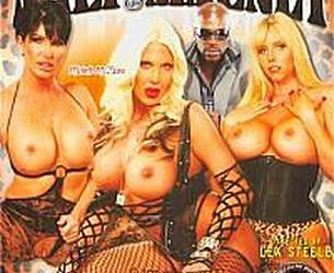 Lexington Steele- MILF Magnet Vol. 6 (2011) (QTGMC DVDRip AVC CRF18)